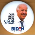 Joe Biden Campaign Buttons (14)