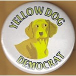 Cause 42D - Yellow Dog Democrat Campaign Button