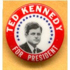 Ted Kennedy Campaign Buttons (19)