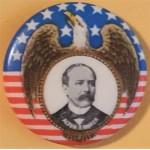 Parker 2E - Alton B. Parker Campaign Button