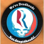 Romney 7H - We're Deadheads Not Stupidheads! Campaign Button