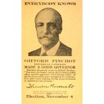 PA 7C - Everybody Knows Gifford Pinchot Republican Candidate Made A Good Governor Paper Card