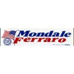 Mondale 10G  - UAW CAP Mondale Ferraro Bumper Sticker